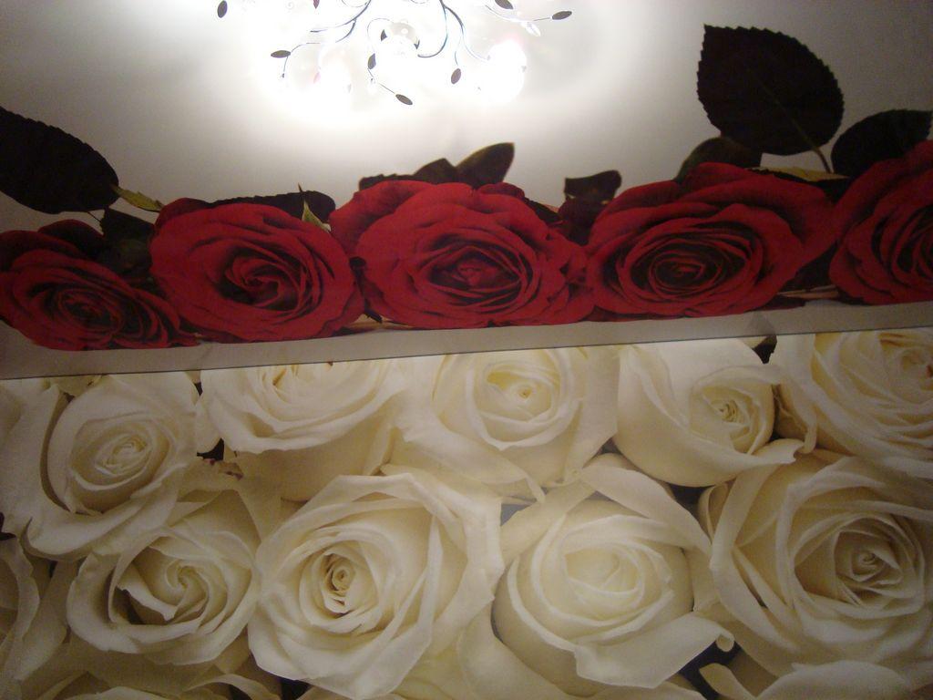 этих картинки розы на потолке жертв